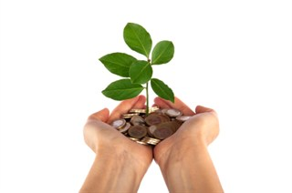 growing_money_plant_15612138_320x212